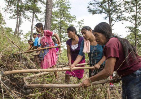 O trabalho da Ajuda em Ação em resposta ao desafio das alterações climáticas