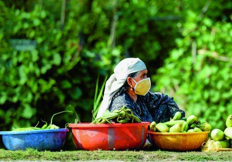 Cooperação internacional deve assumir um papel central na luta contra a fome