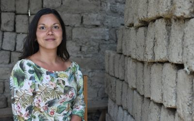 Covid-19 e violência de género no Peru