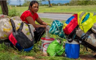 Refugiados e deslocados: quais as diferenças?